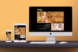Lash Lady website